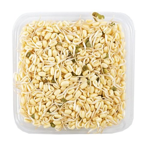 Bean Sprouts Baby Organic