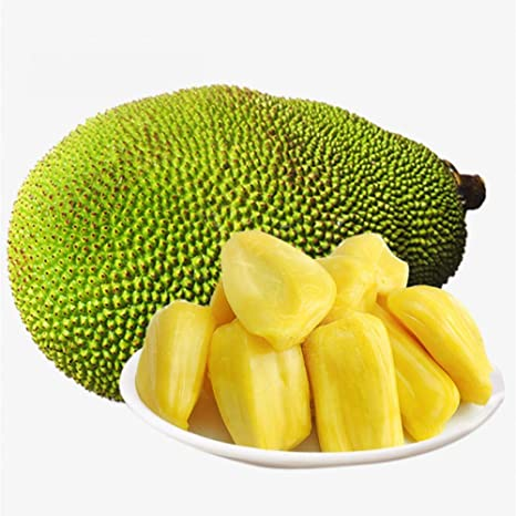 Young Jack Fruit